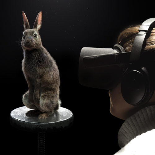 PETA EYE TO EYE Virtual Reality Dialogue