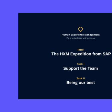 SAP collection01